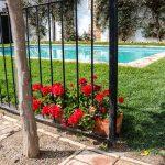 flores piscina